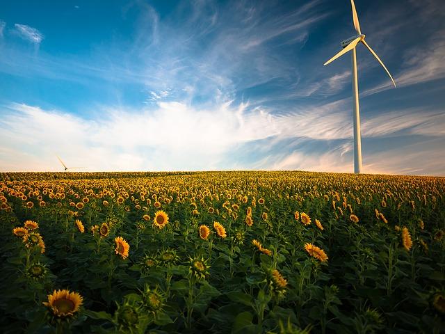 Les énergies renouvelables les plus rentables