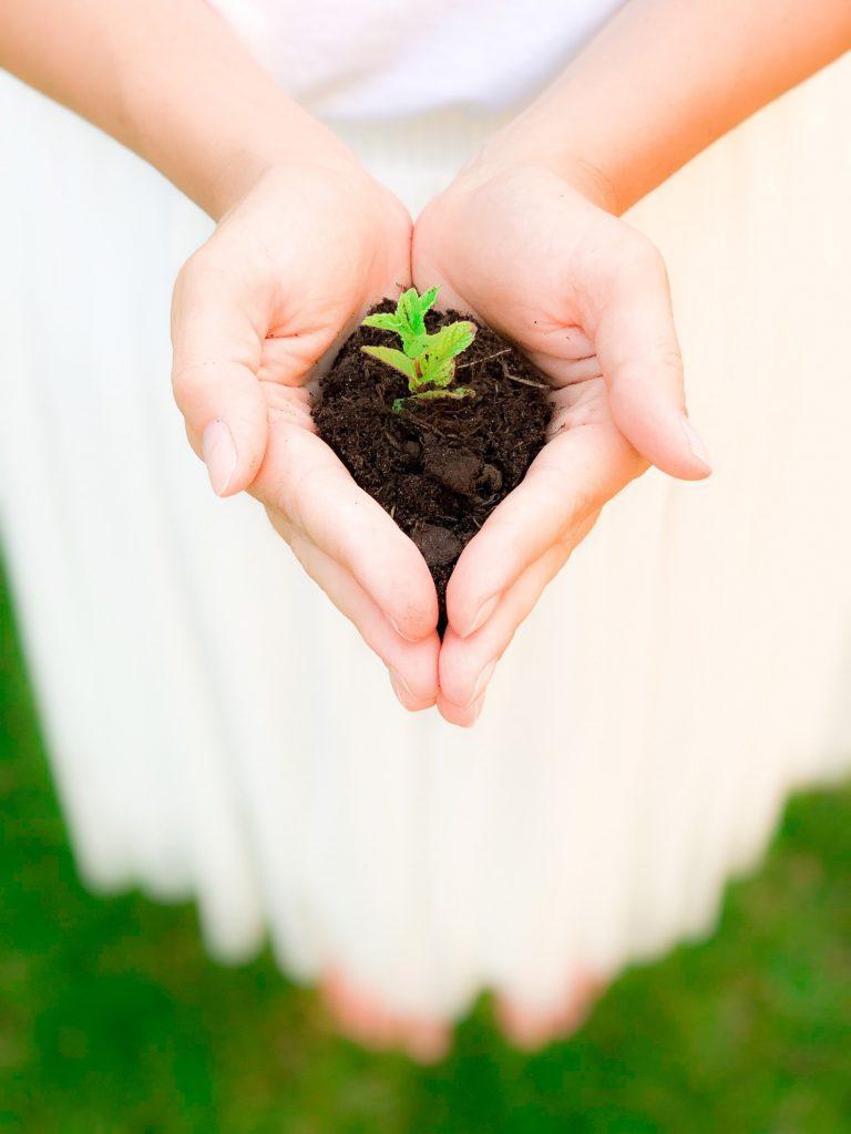 Comment vivre de manière plus écologique quotidiennement ?